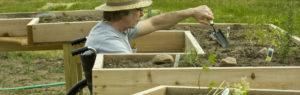 Bannière jardinage